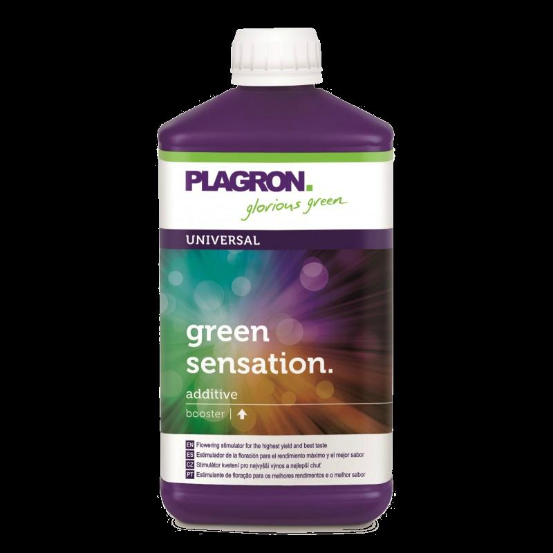 Pospješivač za bilje Plagron Green Sensation